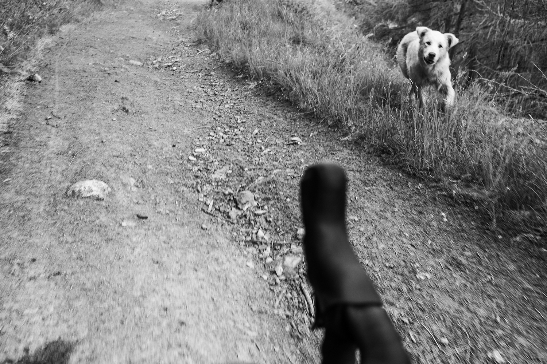 paolociaberta_viadelasale_bikepacking017
