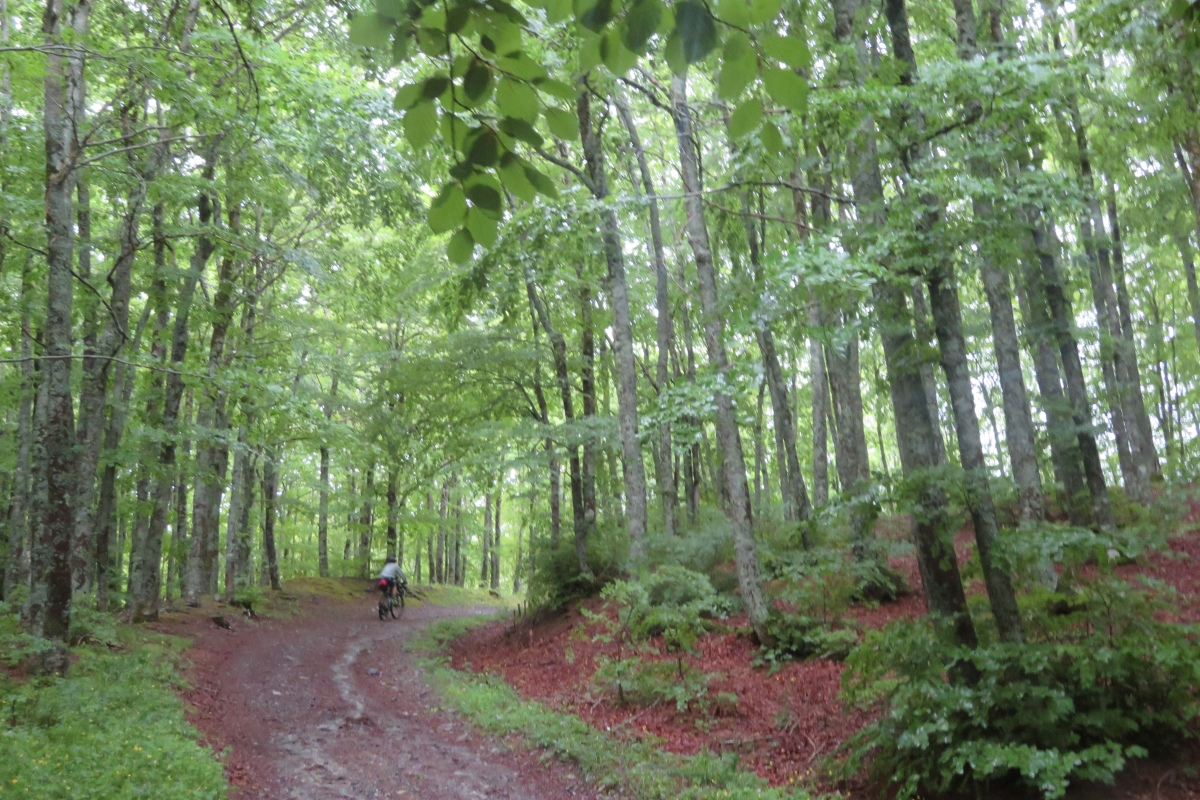 grand italian trail basilicatal 002