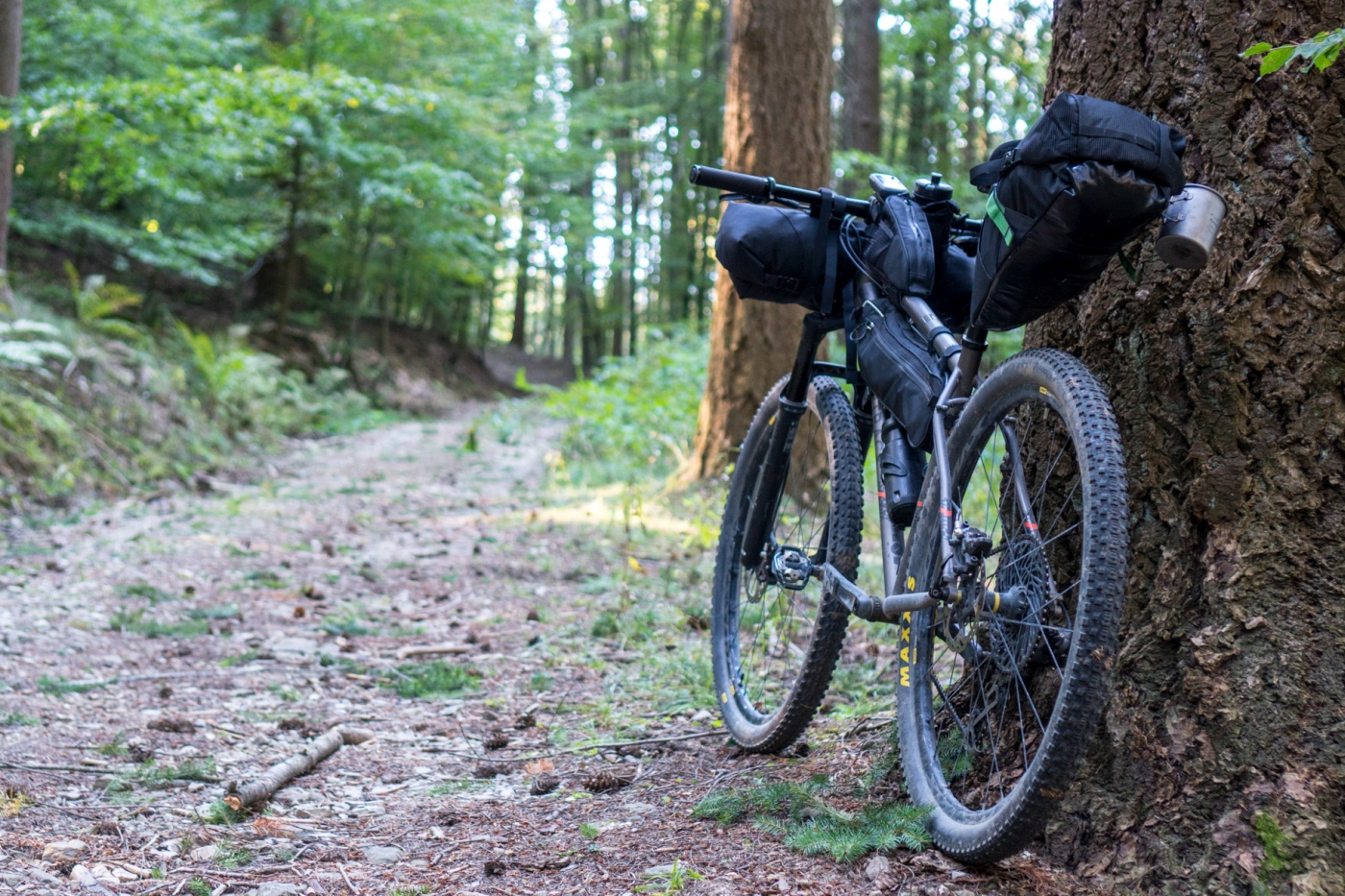 pratomagno_bikepacking-15