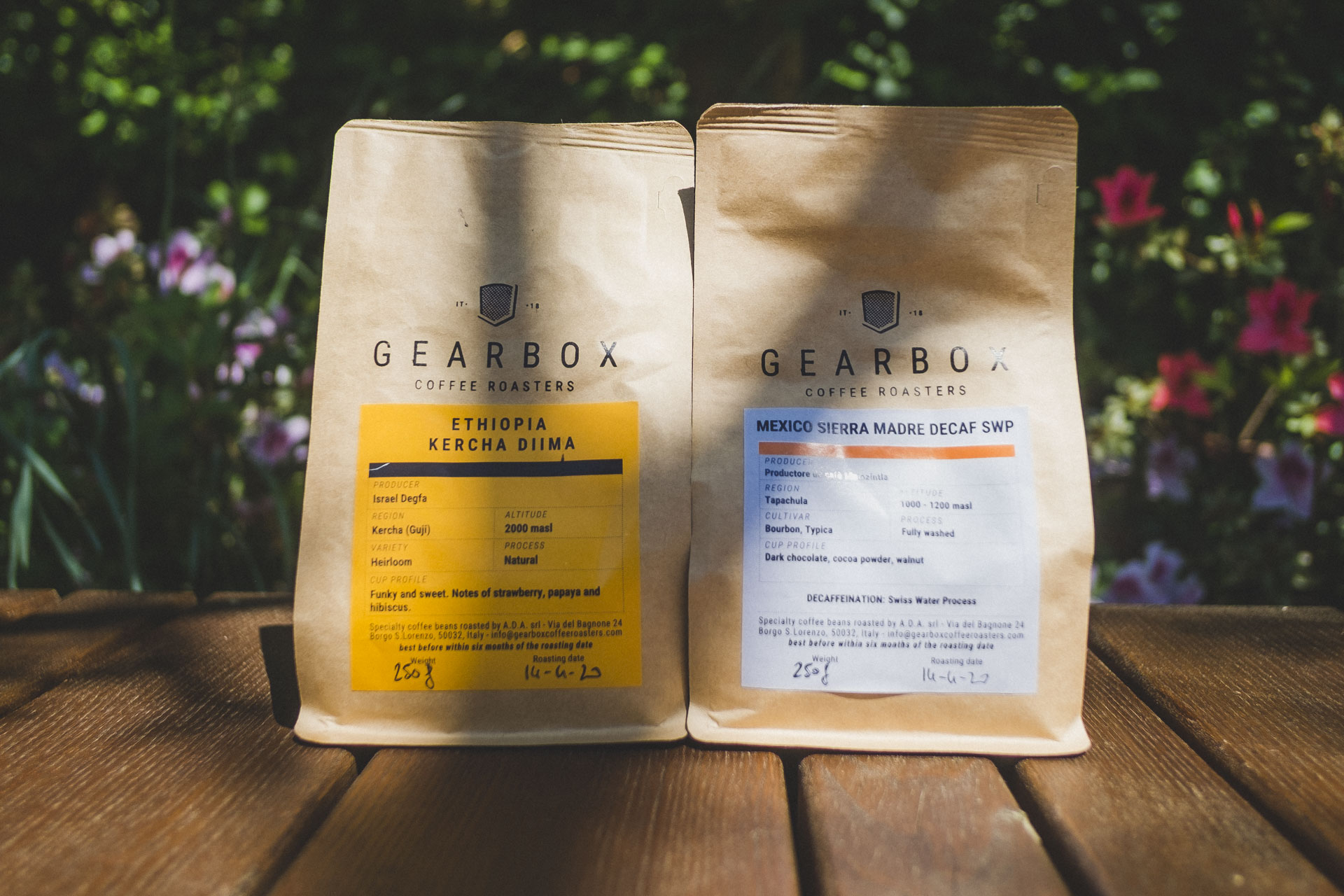 caffè gearbox