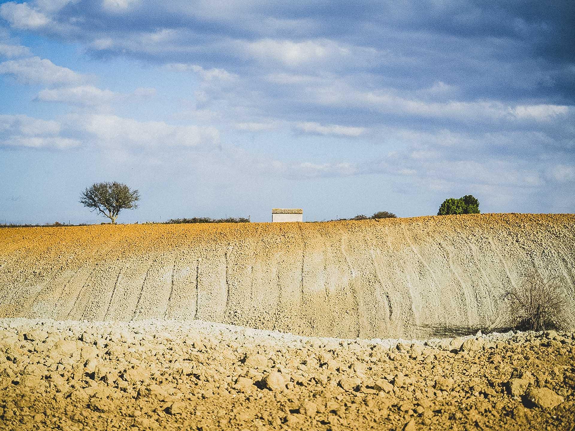 panorama rurale dalla Via Clodia
