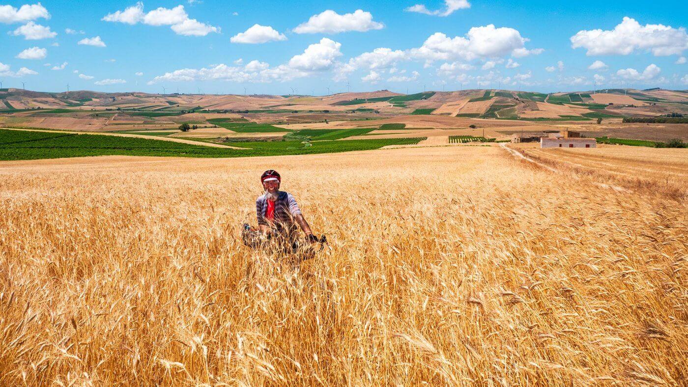 Socily Divide campo di grano