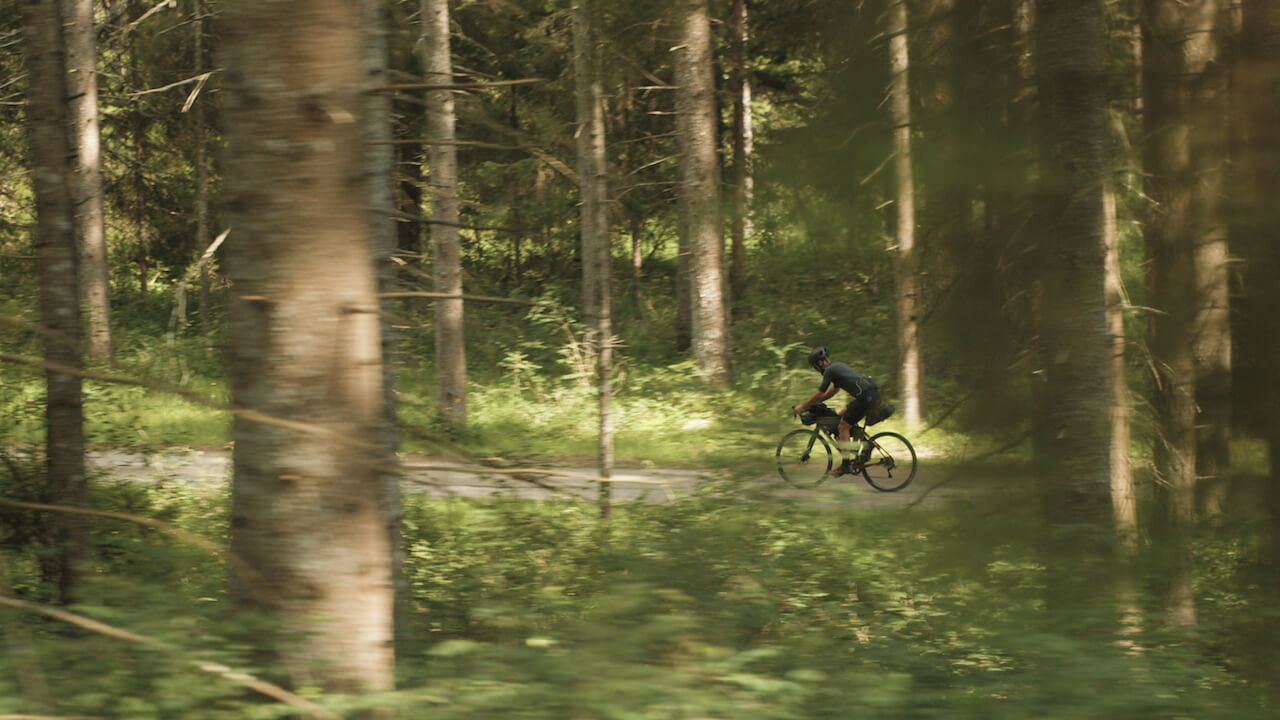 bikepacking forest